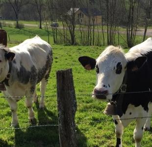 Dynamique positive pour l'agro-écologie en France