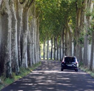 Mobilité : un plan de sauvegarde des routes pour 2019