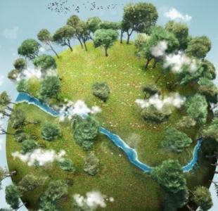 Environnement : les enjeux bientôt inscrits dans la Constitution