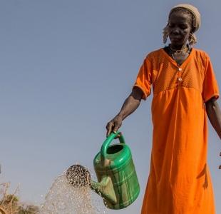 Aide au développement : hausse d'un milliard d'euros en 2019