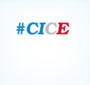Le Crédit d'Impôt pour la Compétitivité et l'Emploi (CICE)