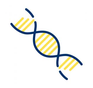[Grand Défi] Biomédicaments :  améliorer les rendements et maîtriser les coûts de production