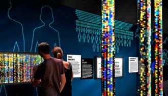 Exposition « Nous et les autres – Des préjugés au racisme » au Musée de l'Homme