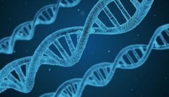 """Labellisation des intégrateurs industriels par le Grand défi """"Biomédicaments"""""""