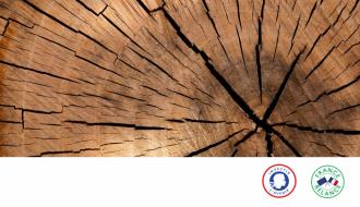 Filière bois construction | Lancement d'un appel à manifestation d'intérêt