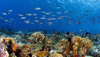 G7 Environment Ministers sign Biodiversity Charter