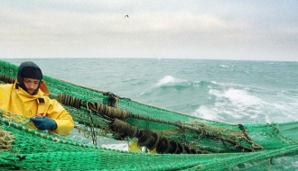 European Commission's positive responses in support of the fisheries and aquaculture sectors