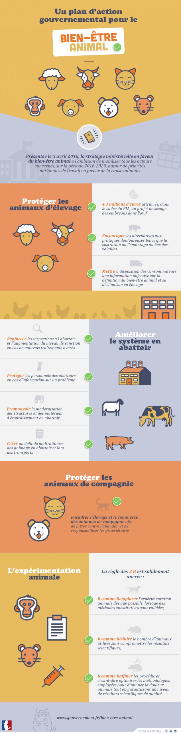 Un plan d'action gouvernemental pour le bien-être animal