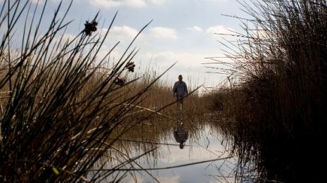 Accéder à la page dédiée à l'action La préservation de la biodiversité