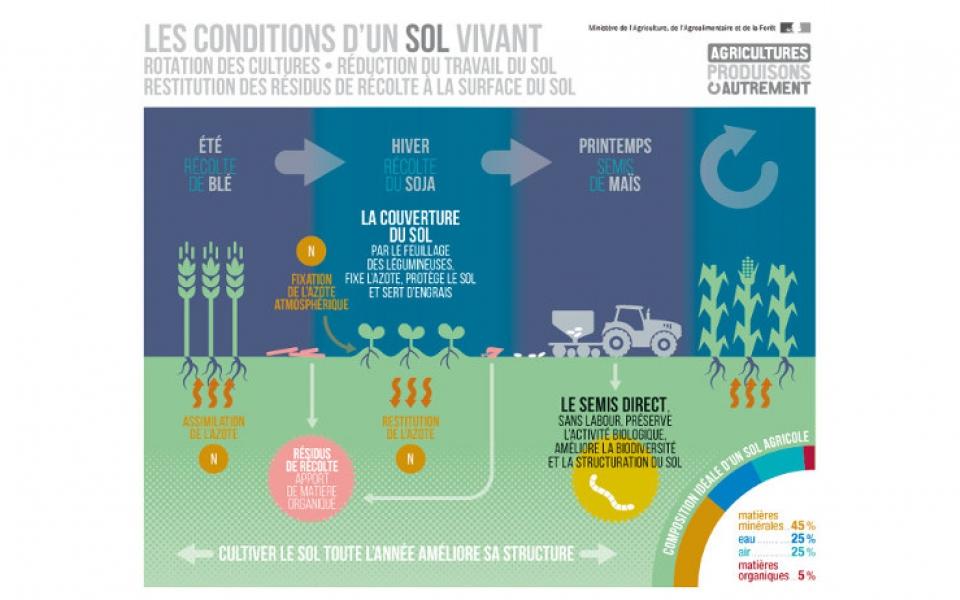 Infographie sur l'agro-écologie et les conditions d'un sol vivant