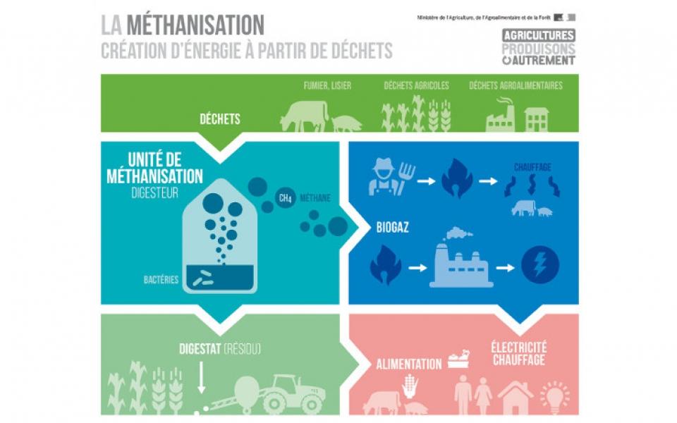 Infographie représentant le principe de la méthanisation