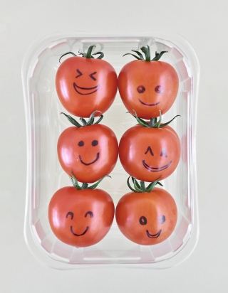 Photo de six tomates rouges en barquette de plastique transparent