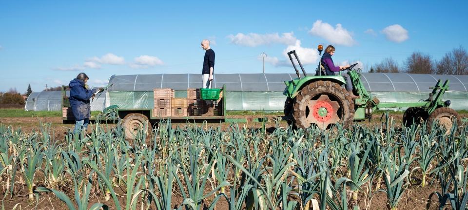 Photo d'un tracteur dans un champ