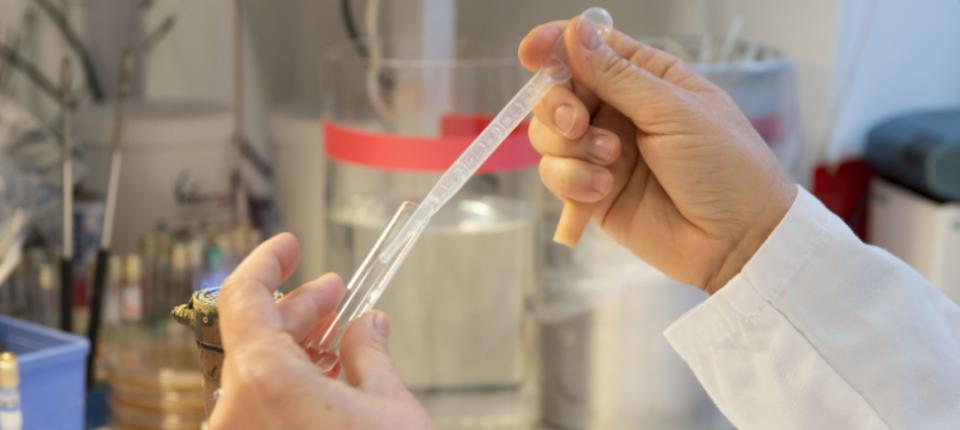 Manipulation dans un laboratoire