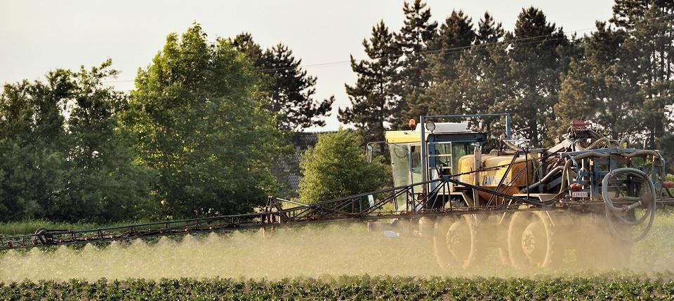 Epandage de Glyphosate dans un champ de pommes de terre