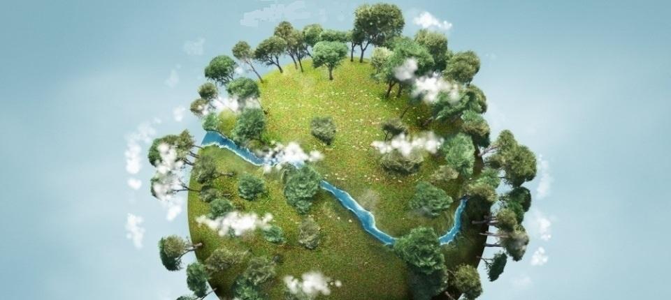 Des arbres sur la planète bleue