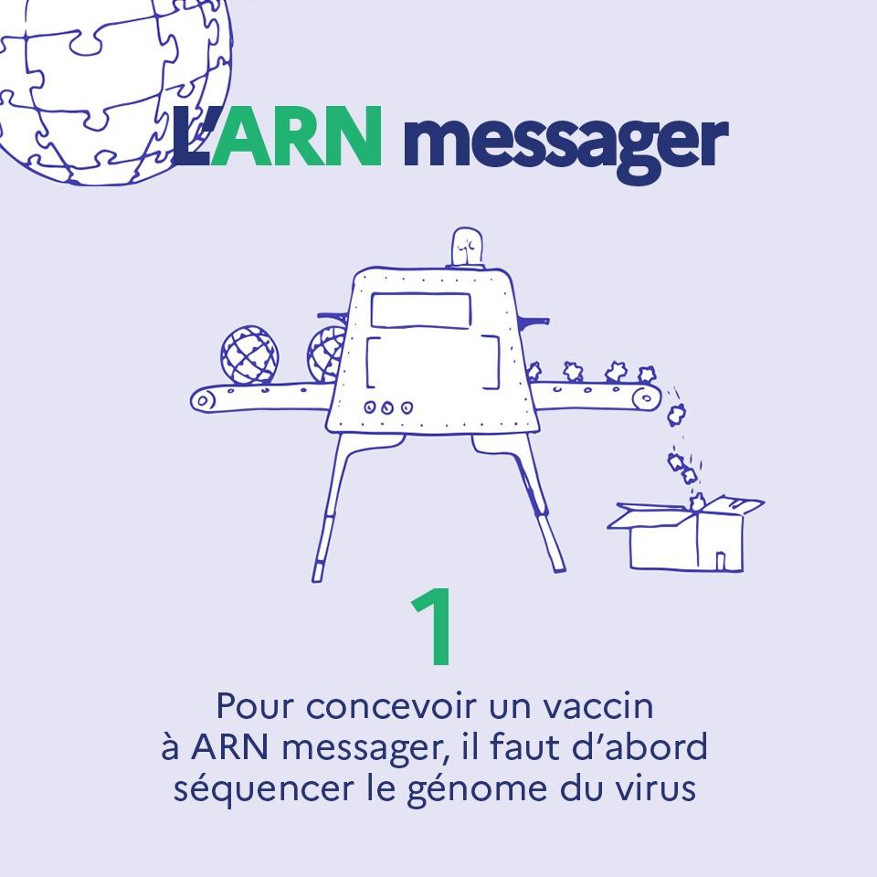 1. Pour concevoir un vaccin à ARN messager, il faut d'abord séquencer le génome du virus