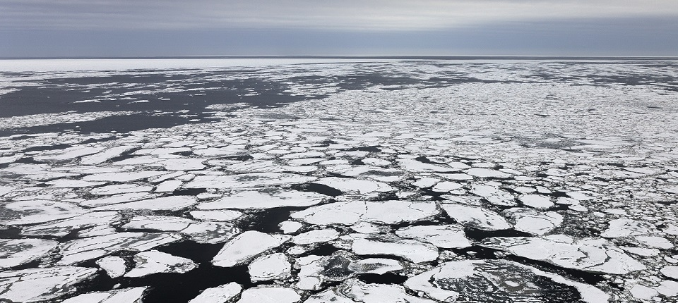 The melting ice cap
