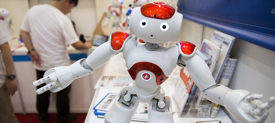 Nao Robot (French company Aldebaran)