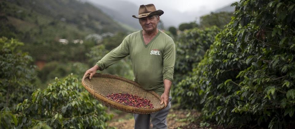 Brazilian farmer Josias Gomes, 64, poses for a picture in his family land in Forquilha do Rio (Brazil)