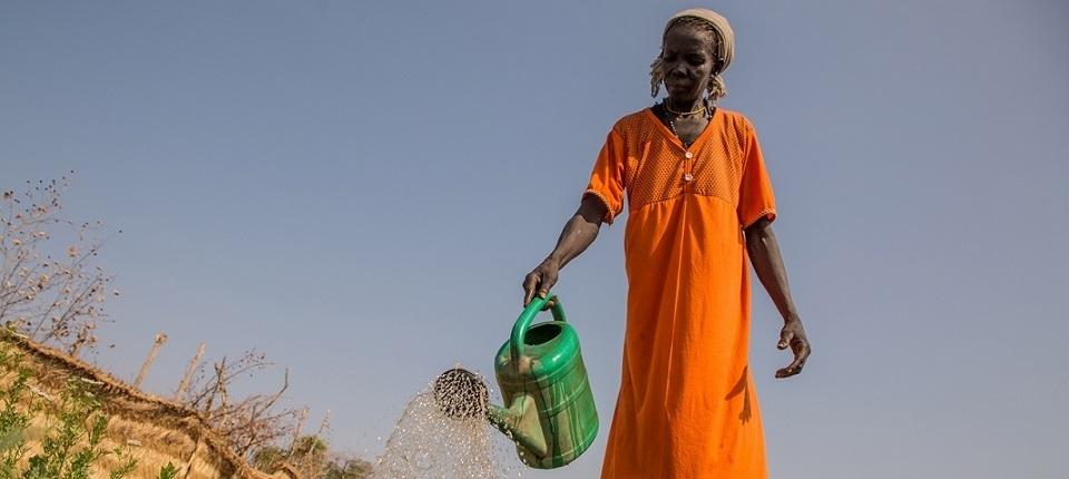 African women in a poor landscape