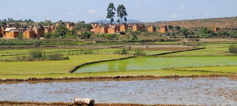 Rural landscape in Africa