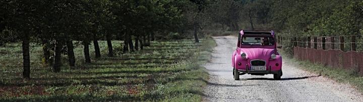 2 cv roulant sur une route de campagne