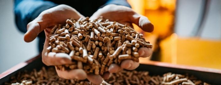 Un homme tient des granulés de bois dans ses mains.