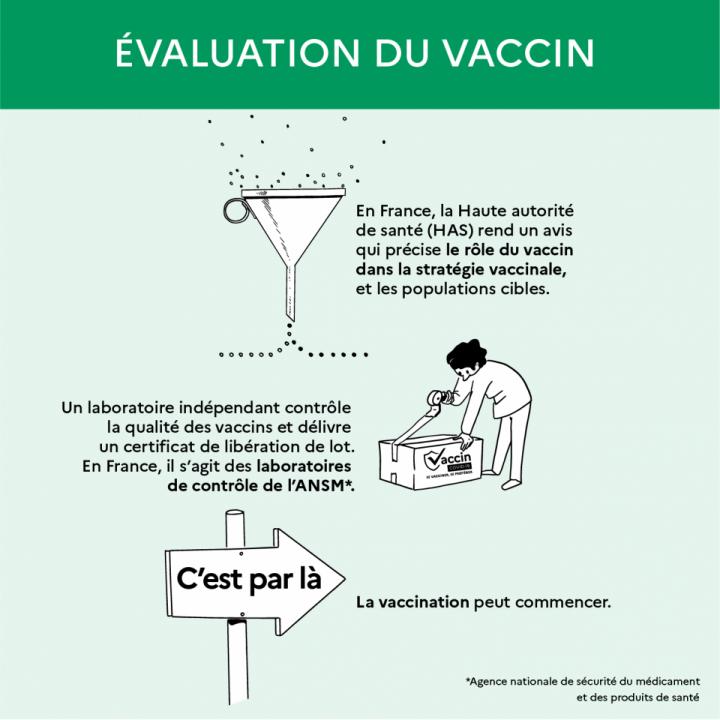 L'évaluation du vaccin 2
