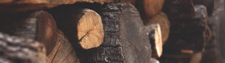 Image de rondins de bois pour illustrer la biomasse