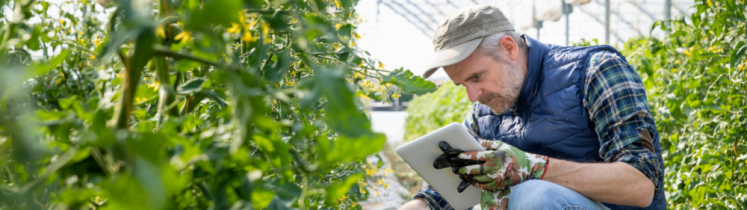 Un agriculteur équipé d'une tablette numérique