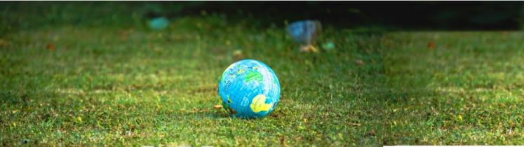 Un globe terrestre est posé sur de l'herbe