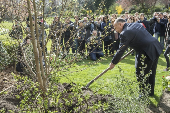Plantation de l'arbre du Premier ministre dans le jardin de Matignon